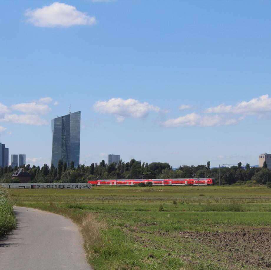 In Frankfurt St.Georgen links neben diesen Kräuterfeldern begann meine Wirksamkeit 1959 mit dem Studium